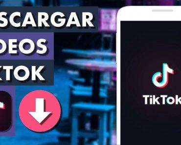 ¿Cómo descargar videos de Tik Tok en privado?