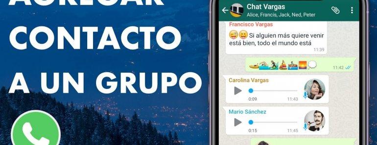 ¿Cómo crear un grupo de WhatsApp sin que se vean los contactos?