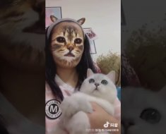 ¿Cómo usar filtro gato en Tik Tok?